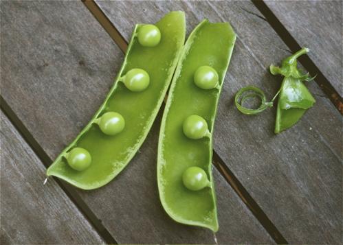 Seven peas