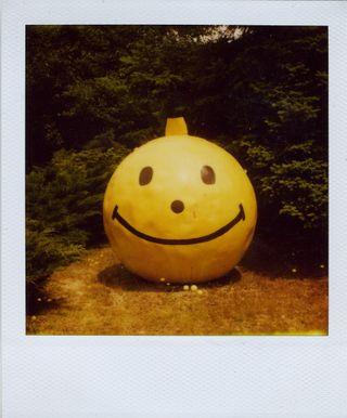 Pola - smile