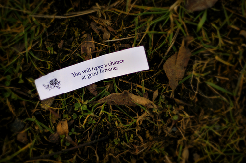 Good fortune in the park