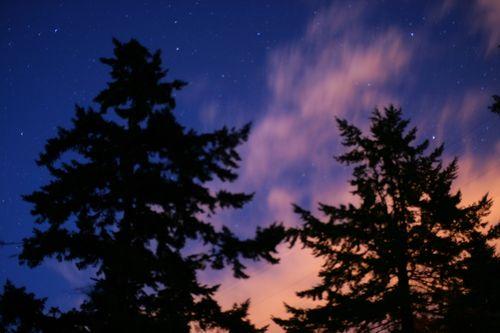 Fluid night sky
