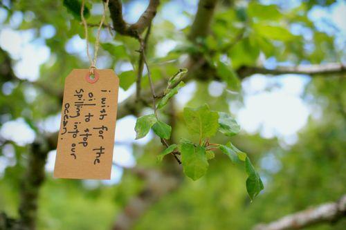 Wish tree 2-2
