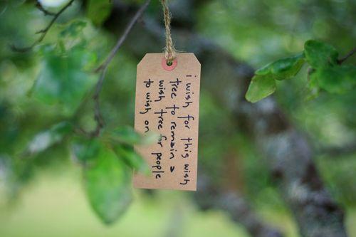 Wish tree 9-2